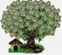 tn_money_tree5.jpg